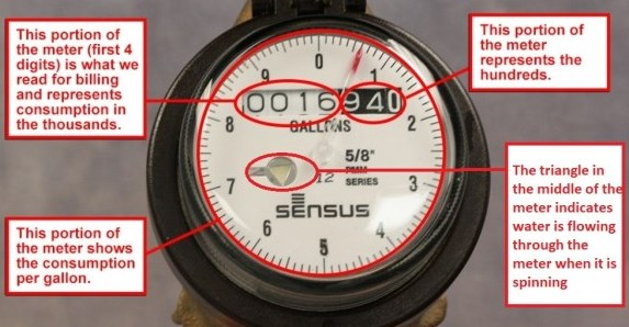 Older Model Sensus Water Meter